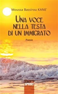 Cover Una voce nella testa di un immigrato