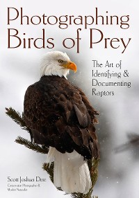 Cover Photographing Birds of Prey