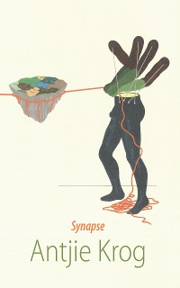 Cover Synapse