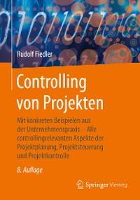 Cover Controlling von Projekten
