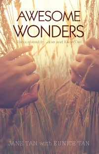 Cover Awesome Wonders