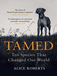 Cover Tamed