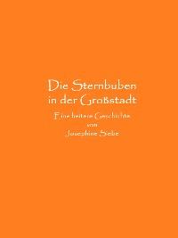 Cover Die Sternbuben in der Großstadt
