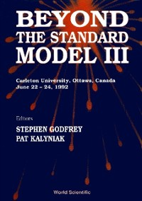 Cover Beyond The Standard Model Iii