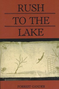 Cover Rush to the Lake