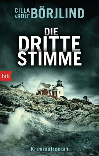 Cover Die dritte Stimme
