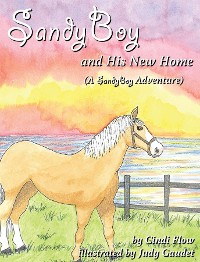 Cover SandyBoy and His New Home (A SandyBoy Adventure)