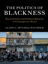 Cover The Politics of Blackness