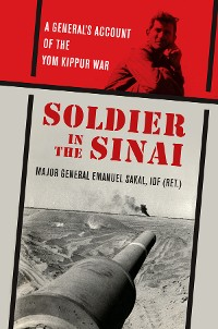 Cover Soldier in the Sinai
