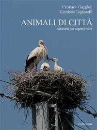 Cover Animali di città