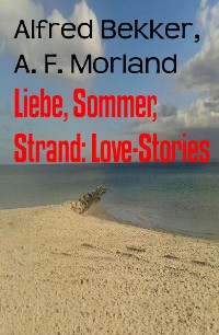 Cover Liebe, Sommer, Strand: Love-Stories