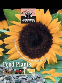 Cover Food Plants