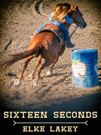 Cover Sixteen Seconds