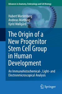 Cover The Origin of a New Progenitor Stem Cell Group in Human Development