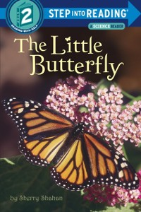 Cover Little Butterfly