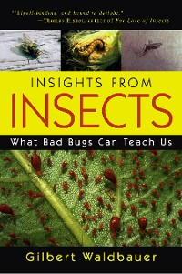 Cover Insights From Insects