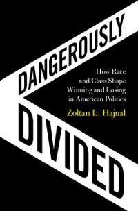 Cover Dangerously Divided