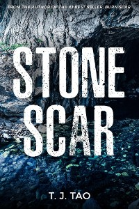 Cover STONE SCAR
