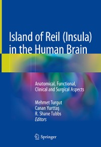 Cover Island of Reil (Insula) in the Human Brain
