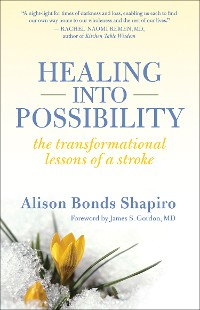 Cover Healing into Possibility