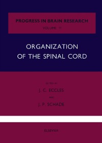 Cover Organization of the Spinal Cord