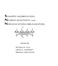 Cover Synaptic Modification, Neuron Selectivity, and Nervous System Organization