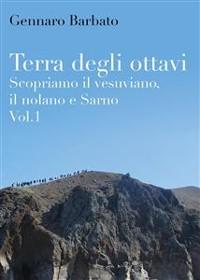 Cover Terra degli ottavi. Scopriamo il vesuviano, il nolano e Sarno. Vol. 1