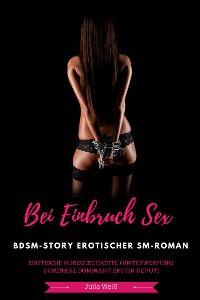 Cover Bei Einbruch Sex BDSM-Story Erotischer SM-Roman Erotische Kurzgeschichte (Unterwerfung Dominanz Dominant Erotik Devot)