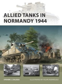 Cover Allied Tanks in Normandy 1944