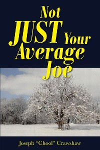 Cover Not JUST Your Average Joe