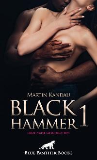Cover Black Hammer 1! Erotische Geschichten