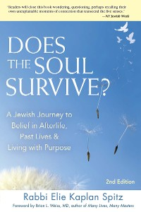 Cover Does the Soul Survive? (2nd Edition)
