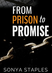 Cover From Prison to Promise