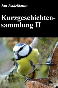 Cover Kurzgeschichtensammlung II