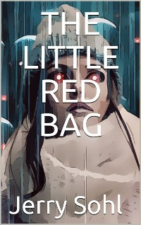Cover The Little Red Bag