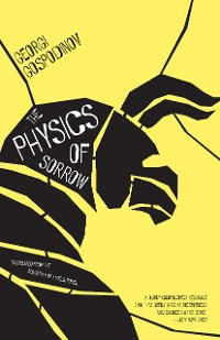 Cover The Physics of Sorrow