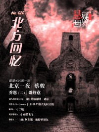 Cover No.020 Mystery world, Memories of the North  (Chinese Edition)