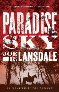 Cover Paradise Sky