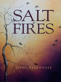Cover Salt Fires