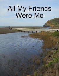 Cover All My Friends Were Me