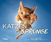 Cover Katzensprünge