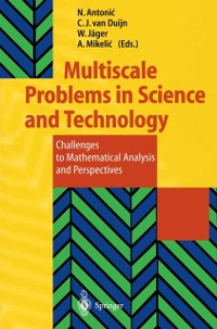 Cover Multiscale Problems in Science and Technology