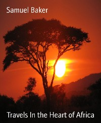 Cover Travels In the Heart of Africa