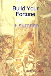Cover Build Your Fortune