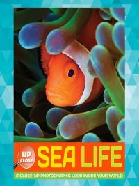 Cover Sea Life