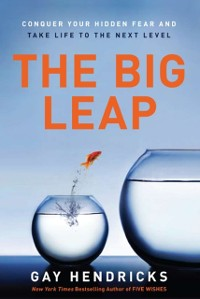 Cover Big Leap