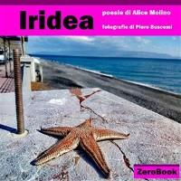 Cover Iridea
