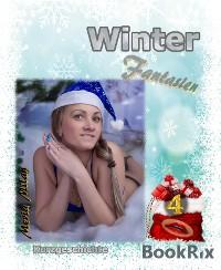 Cover Winter Fantasien 4