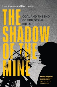 Cover The Shadow of the Mine