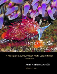 Cover The Intertidal Wilderness